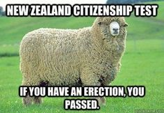 [Image: New-Zealand-citizen.jpg]